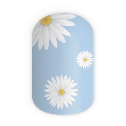 Blikka Daisy Garden Thumbnail